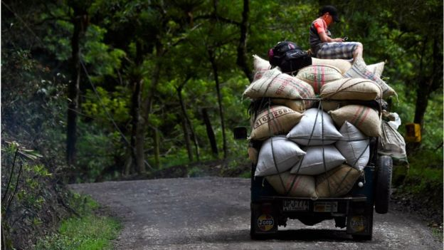 কলম্বিয়ার একটি সড়কে কফি পরিবহন করে নিয়ে যাচ্ছেন স্থানীয় চাষি