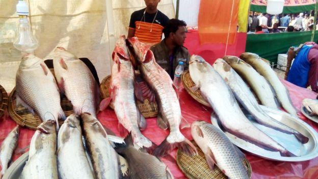 মৌলভীবাজার জেলার শেরপুরে ঐতিহ্যবাহী মাছ মেলা গত রোববার থেকে শুরু হয়েছে, আজ মঙ্গলবার এই মেলা শেষ হবার কথা রয়েছে