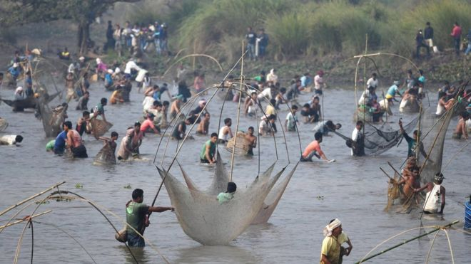 ছবিতে গ্রাম বাংলার খালে-বিলে মাছ ধরার মুহূর্তগুলো