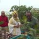 শেরে বাংলা কৃষি বিশ্ববিদ্যালয়ে ছাদকৃষির নানামুখি গবেষণা