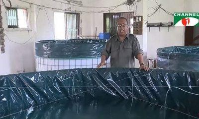ঘরোয়া মাছ চাষের নতুন প্রযুক্তি 'বায়োফ্লক'