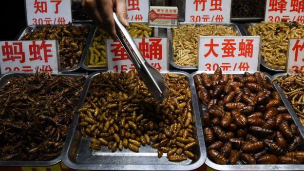 অনেক দেশে - যেমন চীনে - মাংসের পরিবর্তে বিভিন্ন পোকা খাওয়া হয়