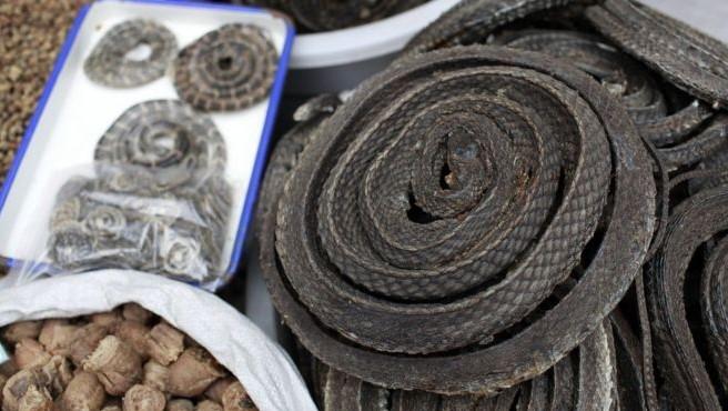 করোনাভাইরাস: চীনে বন্যপ্রাণী বাণিজ্য স্থায়ীভাবে নিষিদ্ধ করার দাবি