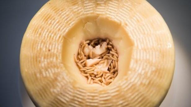 কাসু মারজু পনিরের মাঝে থাকে কীটপতঙ্গ, যা এই পনিরকে আলাদা স্বাদ এনে দেয়