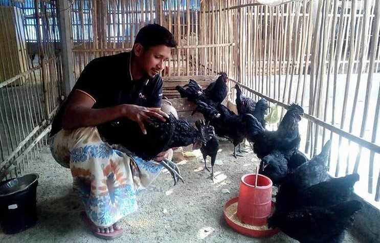 ভারতের মধ্য প্রদেশে কাদাকনাথ 'কালোমাসি' বা 'কড়কনাথ' নামে পরিচিত। এ মুরগির হাড়, মাংস, জিব, নখ পর্যন্ত কুচকুচে কালো। খাদ্য তালিকায় এর মাংস সুস্বাদু, ওষুধি গুণসম্পন্ন ও দামি। এর ডিম ও বাচ্চা বিক্রি করেও বেশি লাভবান হওয়া যায়।
