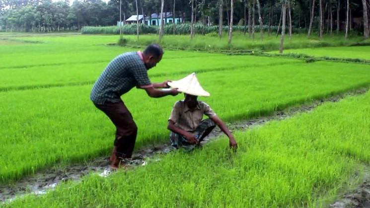 কৃষক দেখলেই ছুটে যান মাদরাসা শিক্ষক এমদাদ