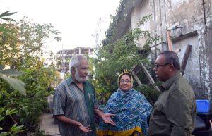 রামপুরায় ব্যাংক কর্মকর্তার সফল ছাদ-কৃষি