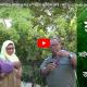 ফ্রান্সে সাইফুল ইসলাম ও কাম্রুন্নাহার দম্পতির আঙিনা কৃষি