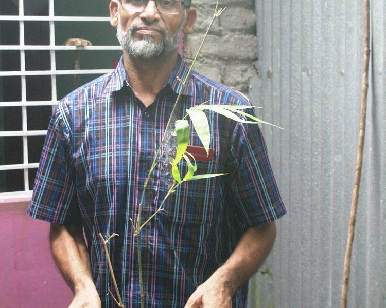 বাঁশ নিয়ে ১২ বছরের গবেষণায় সফল মুক্তিযোদ্ধা নজরুল