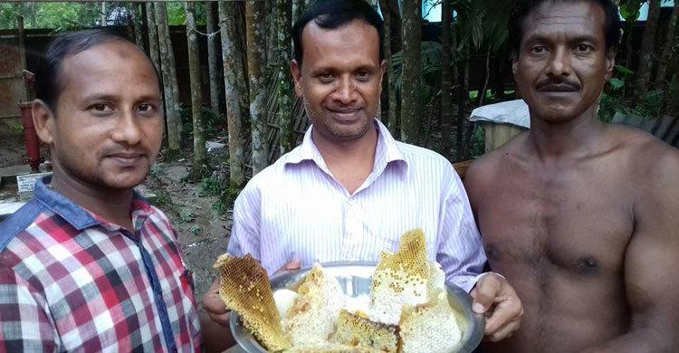 মধুচাষে স্বাবলম্বী মৌলভীবাজারের ৪ শতাধিক চাষি