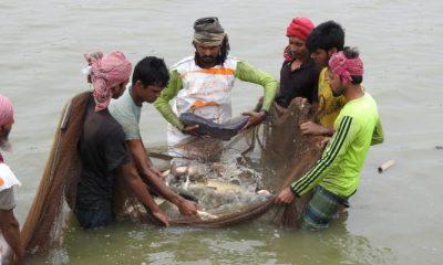 ঘেরে মাছ ধরছেন মৎস্য শ্রমিকরা