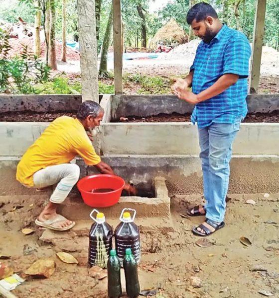 উৎপাদিত লিচেট সংগ্রহ করছেন কৃষক নিজাম উদ্দিন। সম্প্রতি পাকুন্দিয়ার খামা গ্রামে। প্রথম আলো