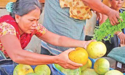 বিক্রির জন্য চিনাল এনেছেন এই নারী। সম্প্রতি রাঙামাটি শহরের বনরূপা বাজারে