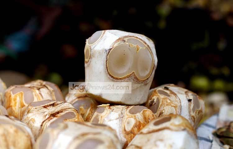 রাজধানীর বিভিন্ন স্থানে পাওয়া যাচ্ছে তালের শাস। এতে বেশ পুষ্টিগুণ রয়েছে। ছবি : মাহবুব আলম
