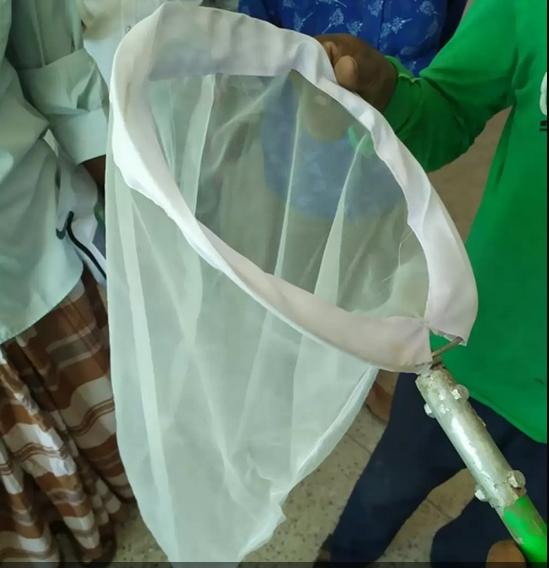 হাতজাল পদ্ধতিতে কীটনাশকমুক্ত ধানচাষে সফলতা
