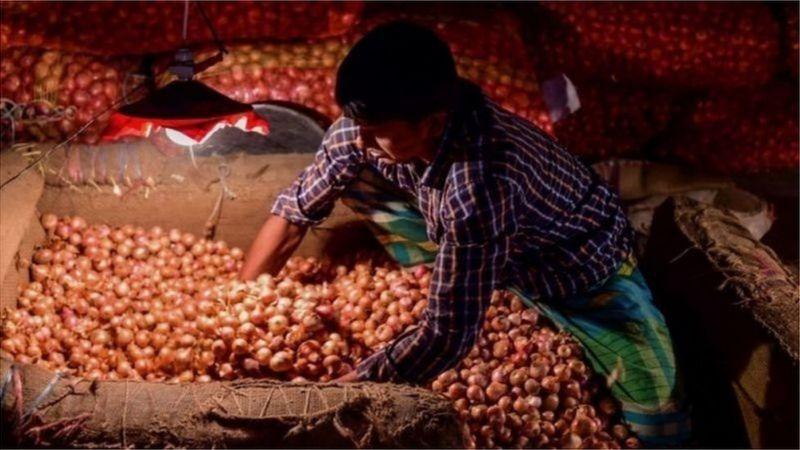 ভারত থেকে আমদানি করা পেঁয়াজের ওপর নির্ভরশীল বাংলাদেশ