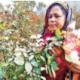 'মাইনাস' থেকে শুরু করে এখন অনুকরণীয়
