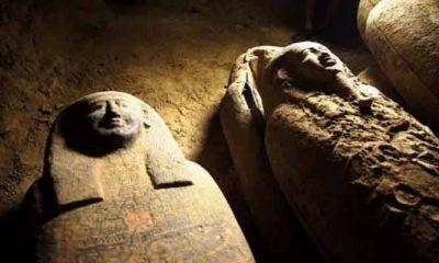 'আড়াই হাজার বছর' আগের ১৩ অক্ষত কফিন মিলল মিশরে