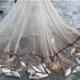 ভাসানচরে ফসল-মাছচাষ-পশুপালন করতে পারবেন রোহিঙ্গারা