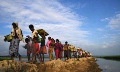 ২০১৭ সালে মিয়ানমারের সেনাদের নির্যাতনে লক্ষ লক্ষ রোহিঙ্গা বাংলাদেশে পালিয়ে আসে