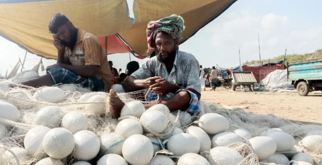 সাগরে মাছ ধরা বন্ধ : চট্টগ্রামের ৫ শতাংশ জেলেও পাননি চাল