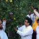 উন্নত জাতের মাল্টা চাষে স্বপ্ন বুনছেন রহিম সরদার