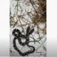 দেখা মিলল বিরল দু'মুখো সাপের, ভিডিও ভাইরাল