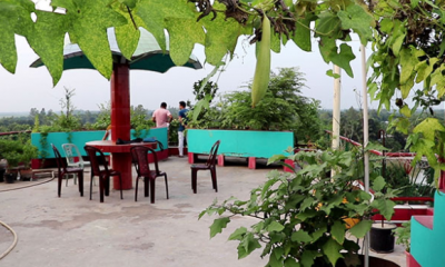 নতুন পদ্ধতিতে 'এমপি পার্কে' ছাদ বাগান