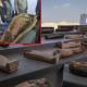 রহস্যে মোড়া আড়াই হাজার বছর পুরনো ১০০ কফিন উদ্ধার