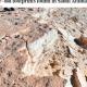 সৌদি আরবে ১ লাখ ২০ হাজার বছর আগের পায়ের ছাপের সন্ধান