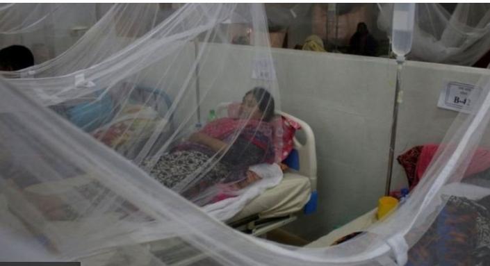 ডেঙ্গু রোগের চিকিৎসায় নতুন ওষুধের সম্ভাবনা দেখছেন বাংলাদেশের একদল গবেষক