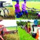 কৃষি যান্ত্রিকীকরণ নতুন দিগন্ত উন্মোচিত করবে : কৃষিমন্ত্রী