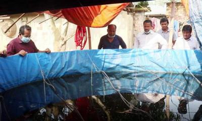 নওগাঁ'র ধামইরহাটে বায়োফ্লক পদ্ধতিতে বাড়ির আঙ্গিনায় মাছ চাষে সফলতা