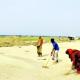 শ্রমিক সংকটে ধান কাটা নিয়ে শঙ্কায় হাওরের কৃষকরা