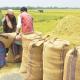 ৪০ টাকায় সেদ্ধ, ৩৯ টাকায় আতপ চাল কিনবে সরকার