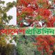 কৃষ্ণচূড়া-সোনালুতে রঙিন কুমিল্লা নগরী