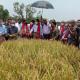 চাঁপাইনবাবগঞ্জের আম হতে পারে অন্যতম রপ্তানিযোগ্য কৃষিপণ্য: কৃষিমন্ত্রী
