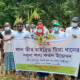 'টিয়া ধান' চাষে গাজীপুরে কৃষকের মুখে হাসি