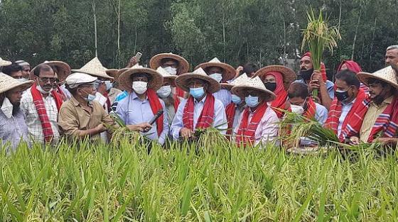 দেশে নতুন করে সবুজ বিপ্লব ঘটবে: কৃষিমন্ত্রী