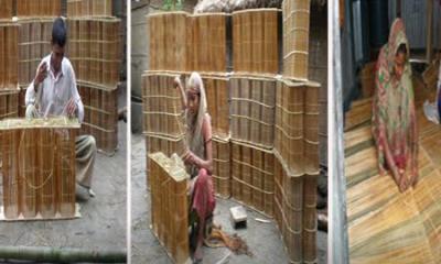 মাছ ধরার উৎসবে কুমিল্লায় দারকি তৈরির ধুম