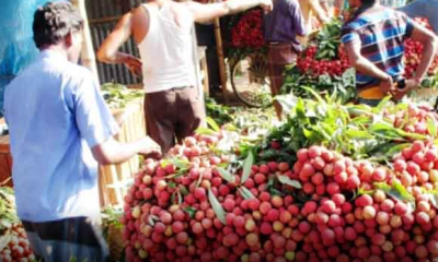 মৌসুমী ফলে ভরপুর কুমিল্লার বাজার