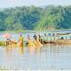 কাপ্তাই হ্রদে মাছ শিকারে আরো ১০ দিন নিষেধাজ্ঞা বাড়ল