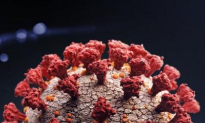 কোভিড: নতুন ভ্যারিয়ান্ট 'ডেল্টা প্লাস' কি ডেল্টার চেয়েও মারাত্মক হতে পারে?