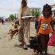 হাঁস-মুরগি পেয়ে মহাখুশি ভাসানচরের রোহিঙ্গা শিশু সৈয়দা