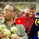 হাট ঘুরে গাছপাকা বেল কিনলেন শাইখ সিরাজ