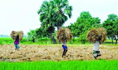 কাল আসছে হেমন্ত