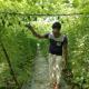 ঢাকা থেকে ফিরে সবজি চাষ, সফল আবদুল আলীম